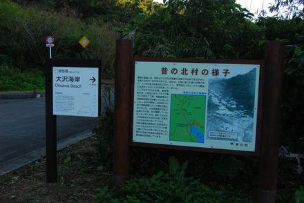 Ogasawara120326